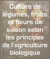 Fruits et légumes bio Seclin